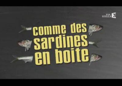 COMME DES SARDINES EN BOITES