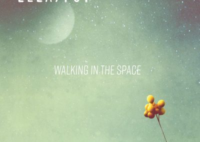 WALKING IN THE SPACE
